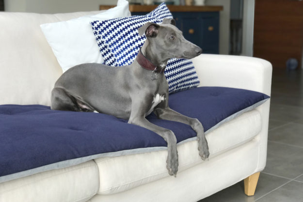 880a30fc2a THE LOUNGING HOUND DESIGNS BEAUTIFUL AND PRACTICAL PRODUCTS FOR HAPPY  HOUNDS AND STYLISH HOMES. Sofa Toppers