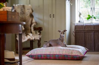 Spotty-Cushions-14