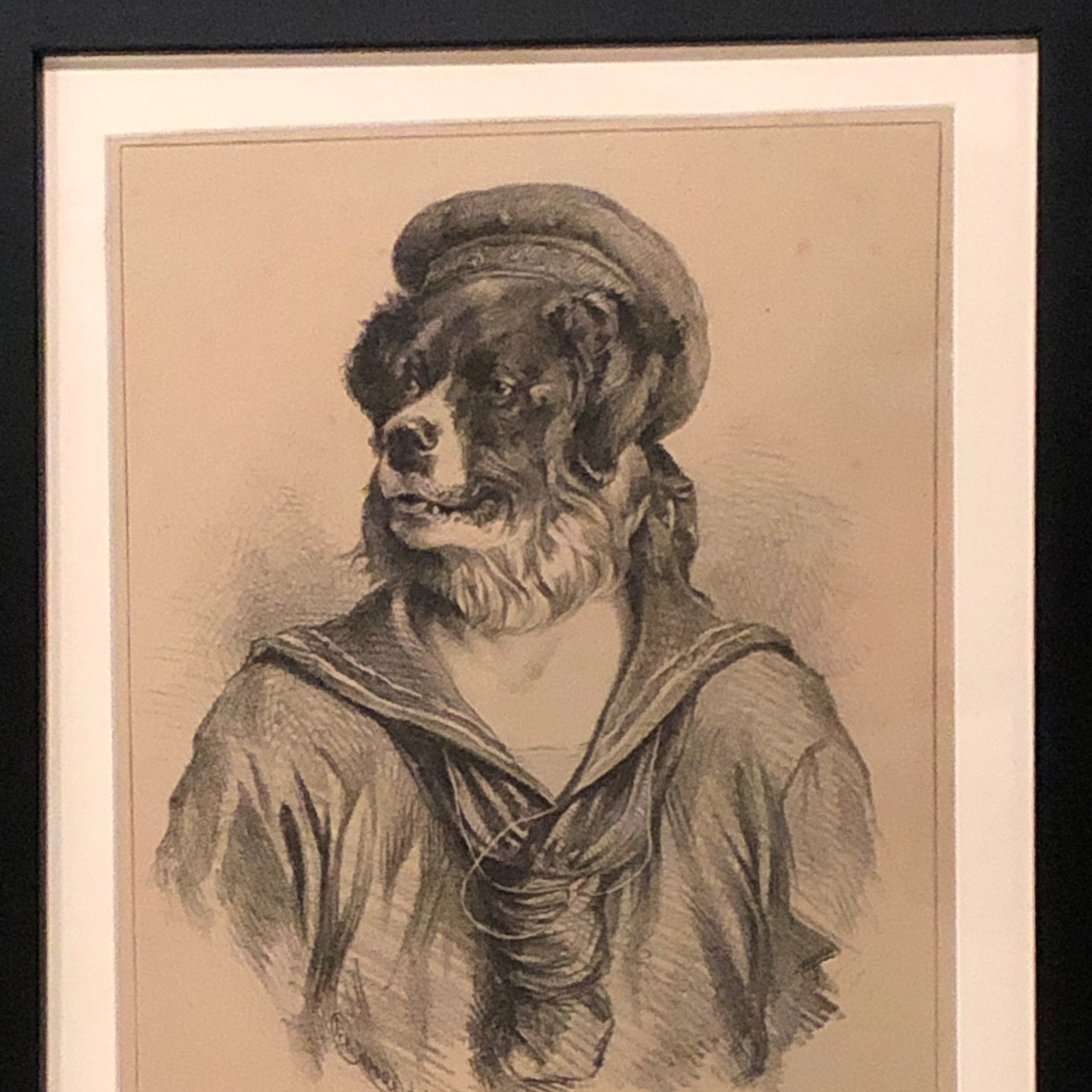 Sea-Dog-by-R-H-Moore-copyright-the-Kennel-Club
